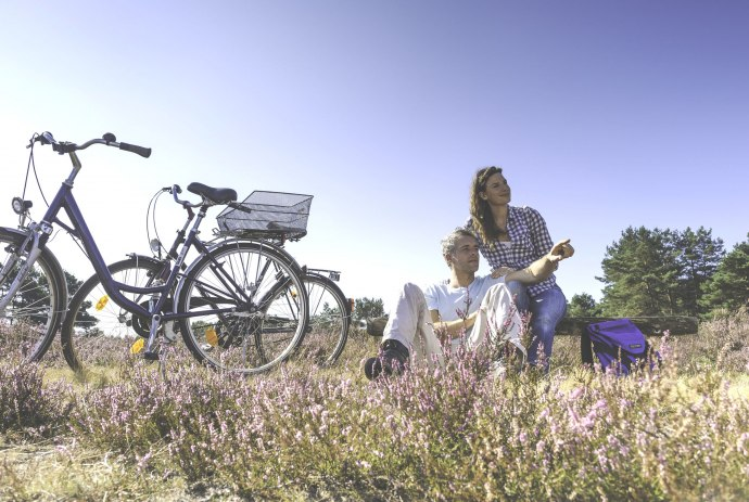 Cycling in the Lüneburger Heide