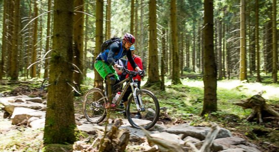 Mountain biker ride over a difficult track in the Hahnenklee Bike Park