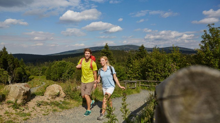 Hikers around Torfhaus in the Harz Mountains