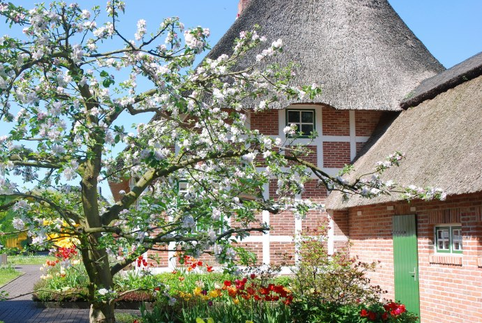 Thatched house in Cuxland