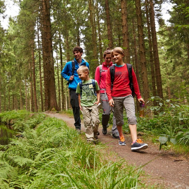 Hiking at the Upper Harz Regale Water Management System