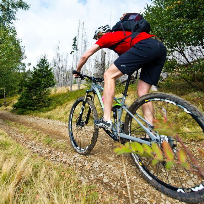 Mountain biker on an ascent in the Harz