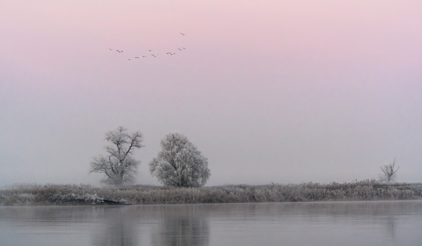 Elbe in winter with morning mood